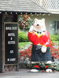 Stewart the Bear in his 81 inch Black Watch tartan kilt.